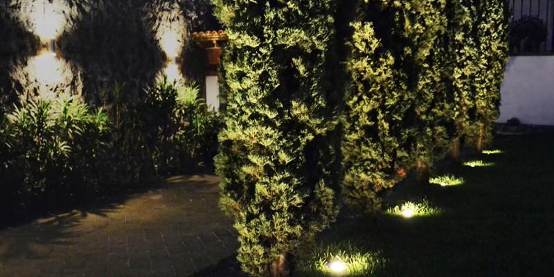 ¿Cuáles son las lámparas ideales para el jardín?