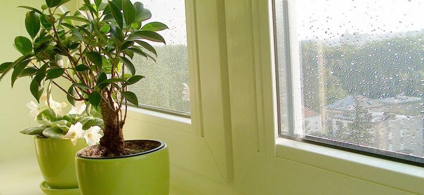 Tips y materiales para proteger los hogares de la lluvia y sus daños